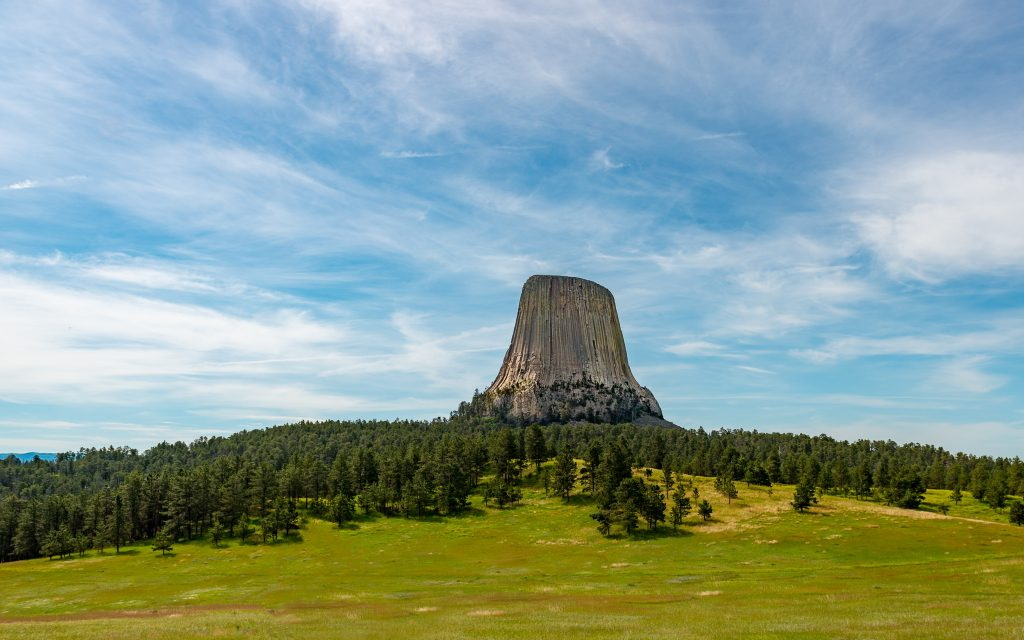 Devil's Tower Tree Stump, the Black Hills, Wyoming