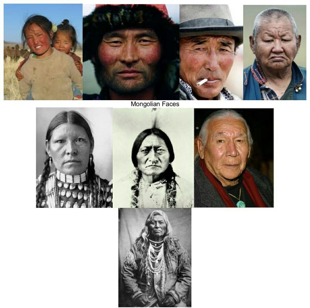 A little chart I just found showing mongoloid phenotype.